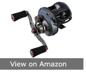 Piscifun Thunder Fishing Reel
