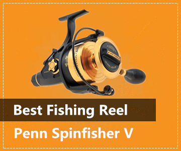 Best Spinning Reel - Penn Spinfisher V