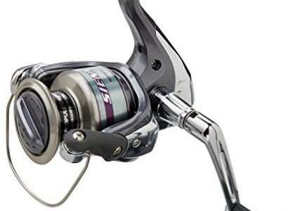 Suggest and Review 3 Reels Under $50 for Beginners