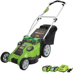 Greenworks 25302